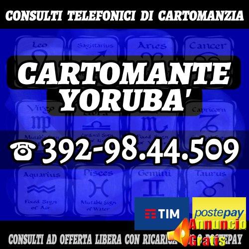 cartomante-yoruba-tim-596