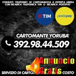 cartomante-yoruba-tim-669