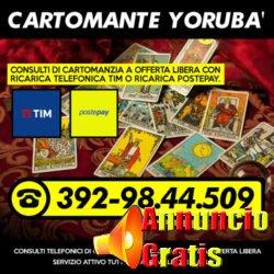 cartomante-yoruba-tim-752
