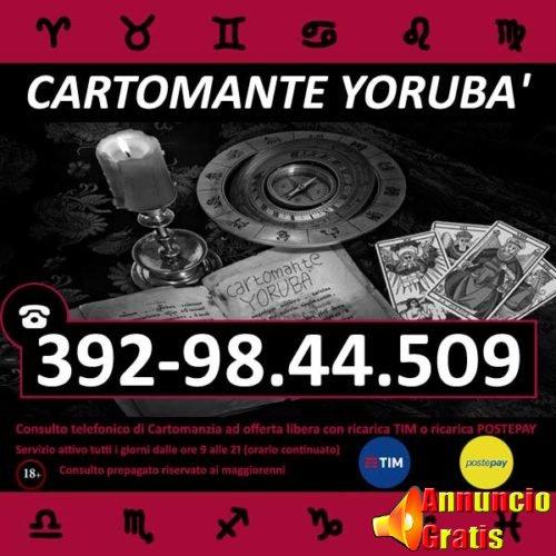 cartomante-yoruba-tim-873