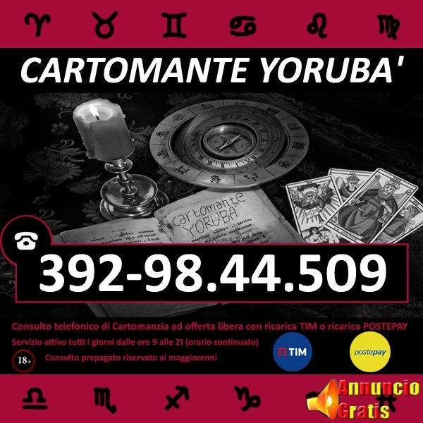 cartomante-yoruba-tim-872